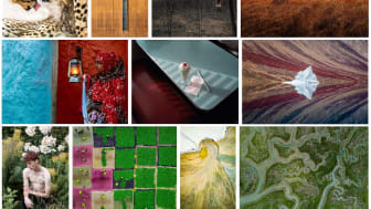 Konkurs Otwarty Sony World Photography Awards 2020 - ogłoszono zwycięzców kategorii i zdobywców wyróżnień