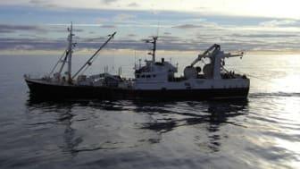 Insatser ska stoppa att fisk slängs överbord