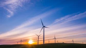 Vinden setter sitt preg på spotprisen // Entelios kraftkommentar uke 16 2021