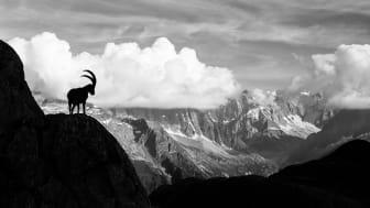 Etwas für's Auge: Wieso Bündner Jäger Ohrringe tragen