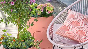 Garten und Terrasse in Sommerlaune