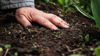 Bodengesundheit in der Landwirtschaft