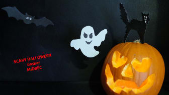 Scary Halloween!