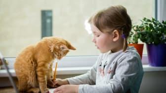 Purina: Åtta trender som kommer forma marknaden för husdjur