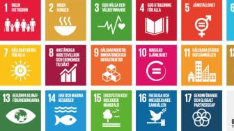 Att skapa nya egna mål är onödigt när vi har Agenda 2030 tycker Emelie Jensdotter.