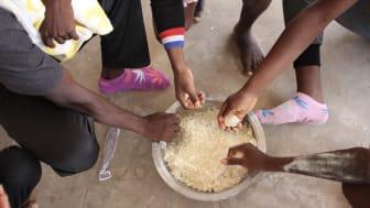Människor i ett fångläger i Tripoli delar på en skål med ris. Foto: Sara Creta / Läkare Utan Gränser