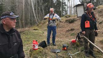 Medlemmar i föreningen Industrilandskap i Bergslagen röjer sly vid Kronohyttan för att göra industriminnet mer tillgängligt för besökare. Foto: Lars Nilsson