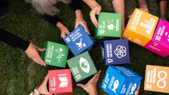 Fokus på hållbarhet för företag