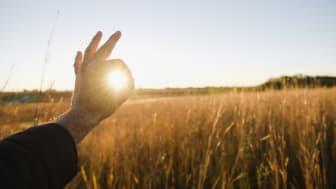Η Mondelēz International επιταχύνει την πρόοδο της στην επίτευξη των στόχων για τη βιωσιμότητα και την ευεξία