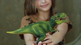 Barn som skänker leksaker till Erikshjälpen Second Hand den 27 april kommer få medalj.
