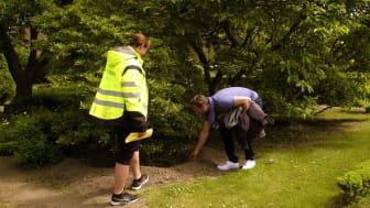 Förberedelserna igång för Landborgskopplingen –först flyttas Rosenträdgården