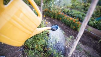 Boende och verkande i Hurva kan nu använda sitt vatten som vanligt.