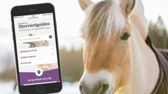 Djurvårdguiden - Allt om frisk- och sjukvård för djur