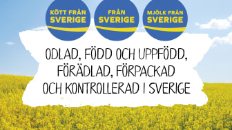 FranSverige_630x430