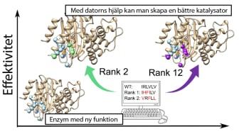 Genom att utgå ifrån uråldriga proteinstrukturer kan man skapa enzymer för nya kemiska reaktioner och sedan använda bioinformatiska beräkningar för att göra dem mer effektiva. https://pubs.rsc.org/en/content/articlelanding/2020/sc/d0sc01935f