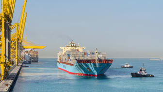 The cost of ocean freight is going up as vessel operators are faced with higher insurance premiums for the Strait of Hormuz. Pictured: Jebel Ali, Dubai (Photo by shutterstock)