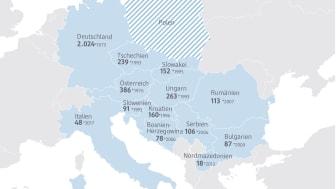 dm sichtet Markteintritt in Polen