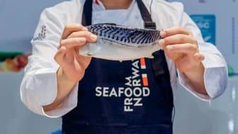 Makrell står på agendaen når Sjømatrådet inviterer til seminar i Seoul og Tokyo. Foto:CAPPMA