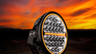 Siberia Night Ranger – Strands Lighting Division