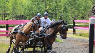 Nordiska Mästerskapen i körning
