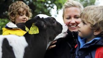 Skånemejeriers Hållbarhetsredovisning 2012