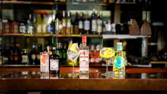Lär dig matcha den perfekta GT:n med Björn Kjellberg, Internationella Gin & Tonic-dagen till ära