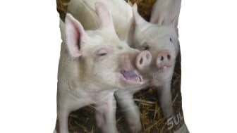 Produktsæk med ViloPiglet HeatPeat Iron