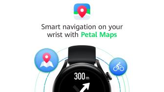 Petal Maps 1.png