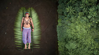 Sony World Photography Awards 2020: Professional, Open, Student and Youth winners announced