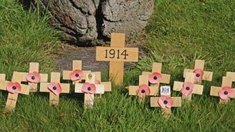 Research highlights silent warriors of First World War