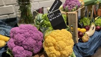 Vackra färger på grönsakerna under skördeveckan i Kävlinges skolor