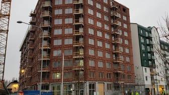 Stommarna är resta till kvarteret Docenten, som SKB bygger i Rosendal i Uppsala. Foto: SKB/Peter Svahn