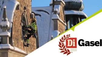 Klätterservice utför hantverksuppdrag från rep, i år uppfylls kriterierna för Gasellföretag.