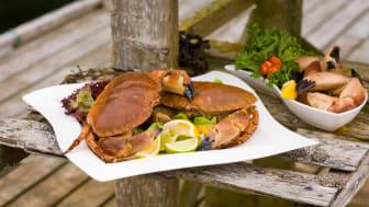 Nå er det igjen tid for krabbe, som er på sitt beste nå om høsten.