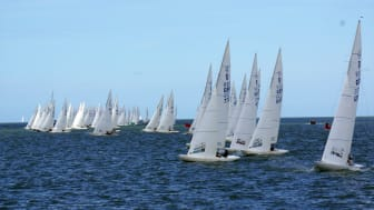 Dragon class yachts in the 2019 Gold Cup
