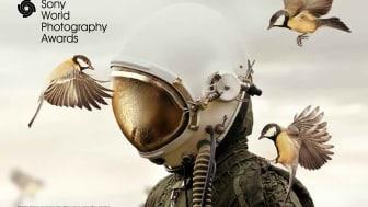 A Photolux Festival un'installazione digitale con  la mostra dei Sony World Photography Awards dal 16 novembre all'8 dicembre