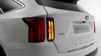 rear bumper with turn signal on