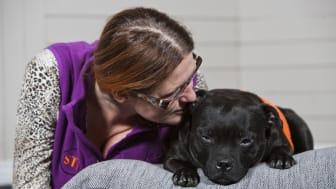 Cocos är Årets sociala tjänstehund