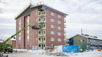 Boligkvarteret Tulpanen i Umeå Sverige