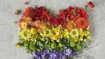 Blomsterlandet är med och sponsrar Run for Pride. Vi vill att alla ska få blomma ut.