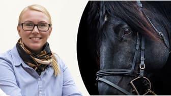 Devgarden Europalanserar digital plattform för hästbranschen
