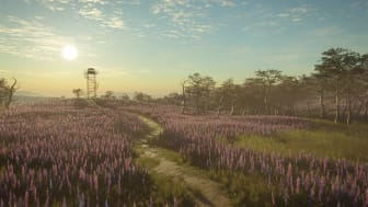 8PF-view 1_watchtower_in_flower_field_1920x1080.png