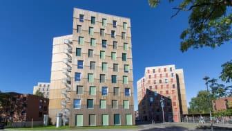 Moholt 50 | 50, Trondheims neuestes Studentenwohnheim, ist Europas größtes Cross Laminated Timber (CLT). Das stylische und elegante Bauwerk hat eine nachhaltige Kebony Fassade