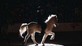 Sprakande familjeshow avslutade lördagens tävlingar på Jönköping Horse Show