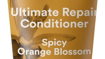 RISE & SHINE Conditioner