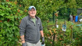 Pictured is Alan Rice, Larne Allotment Gardens.