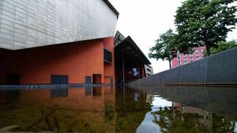 Nach wie vor wird zu häufig in potenziellen Überschwemmungsgebieten gebaut. Foto: Leon Seibert/unsplash.com