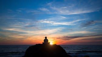 Vad är meningen med livet? I en ny bok svarar 501 svenskar på frågan