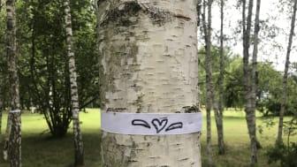 Tusen träd adopterade