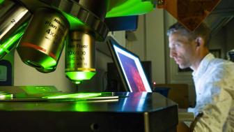 Forskare vid Linköpings universitet undersöker mekanismerna i hjärnan bakom varför man mår dåligt vid olika sjukdomstillstånd.